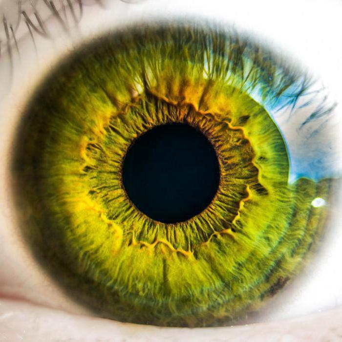 Ангиопатия сетчатки глаза при гипертонии
