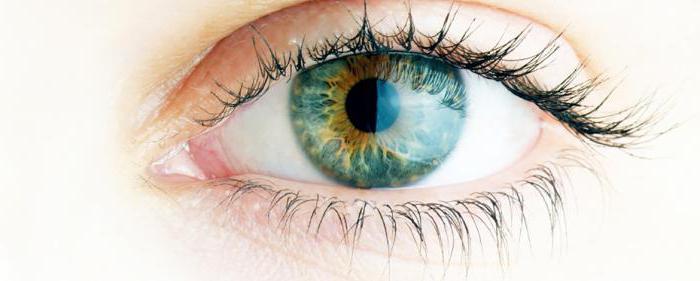 Ангиопатия сетчатки глаза - лечение, симптомы