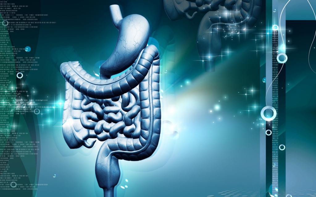 Хронические заболевания пищеварительной системы