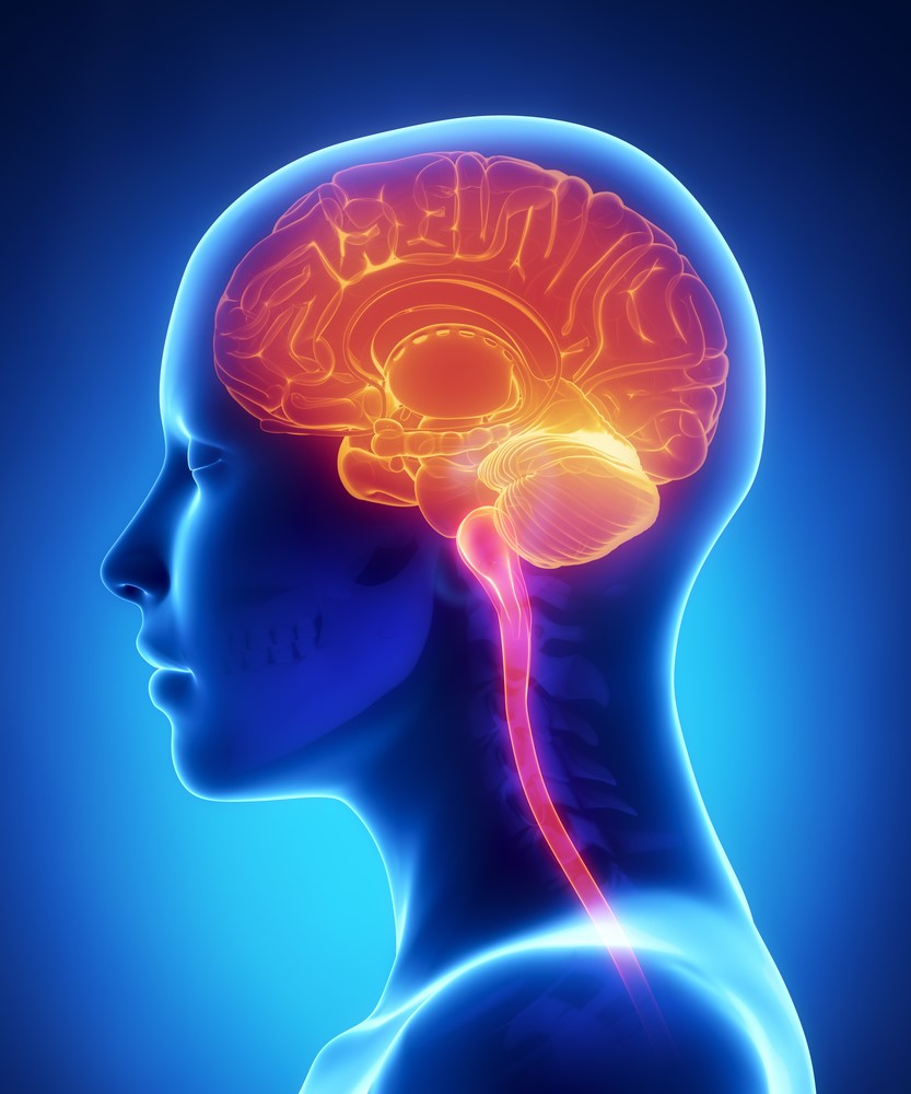 Аномалии развития мозга - Мой веб-сайт