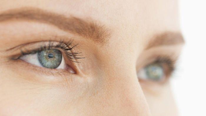Анатомия глаза человека - подробное строение