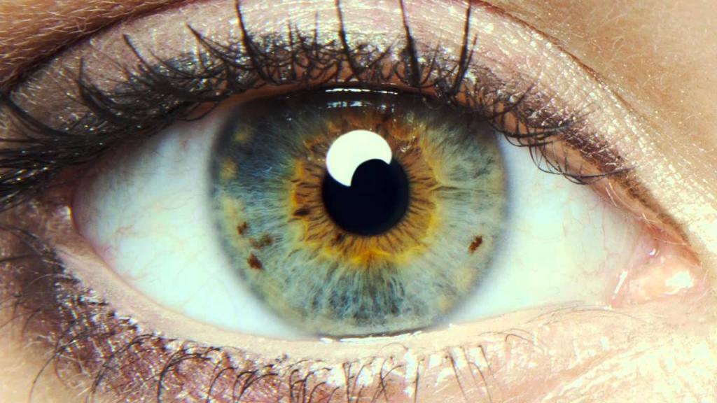 Почему мошки в глазах летают