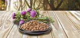 Сколько надо пить расторопшу чтобы вылечить печень — Лечим печень
