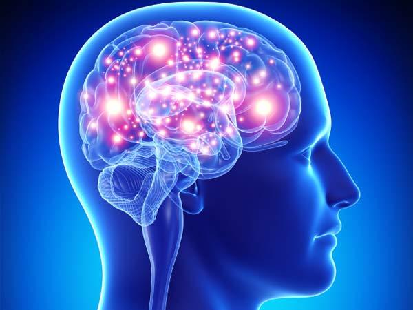действие нейронов