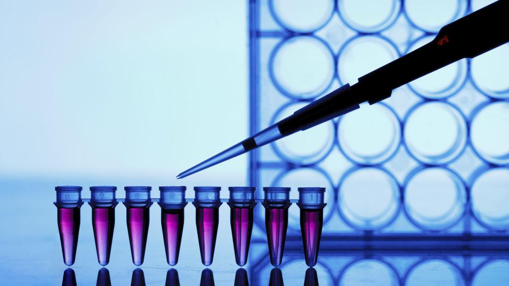 Анализ ПЦР на 6 или 12 инфекций — «Бест Клиник»